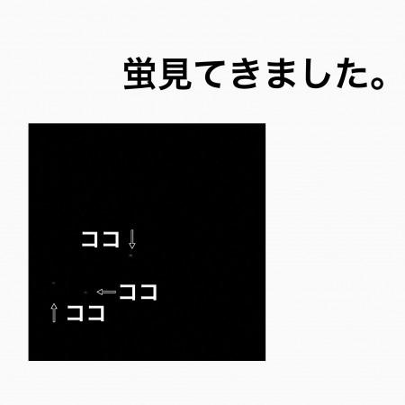 FAF2984E-A657-4BD8-925C-6A5758B7C0EE